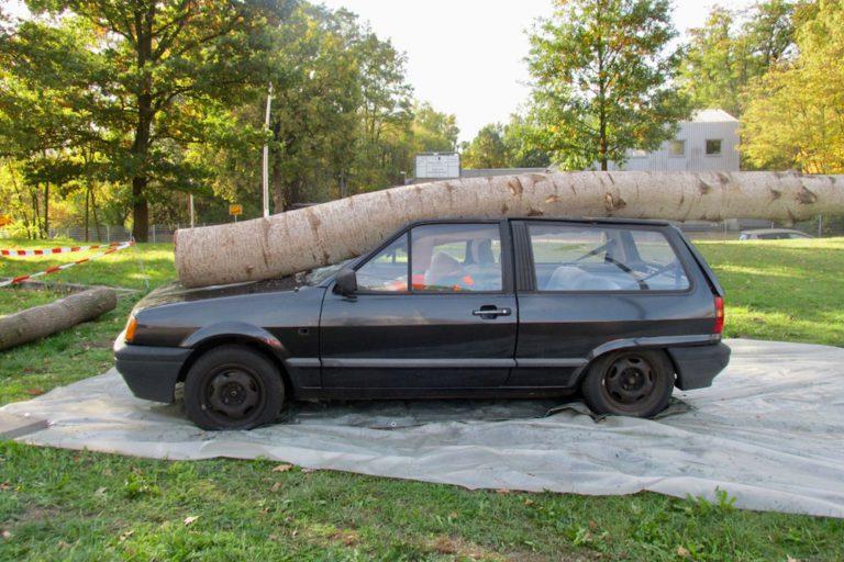 Für den Nachmittag wurde ein Unfallszenario mit einem Baum auf einen PKW gezeigt.